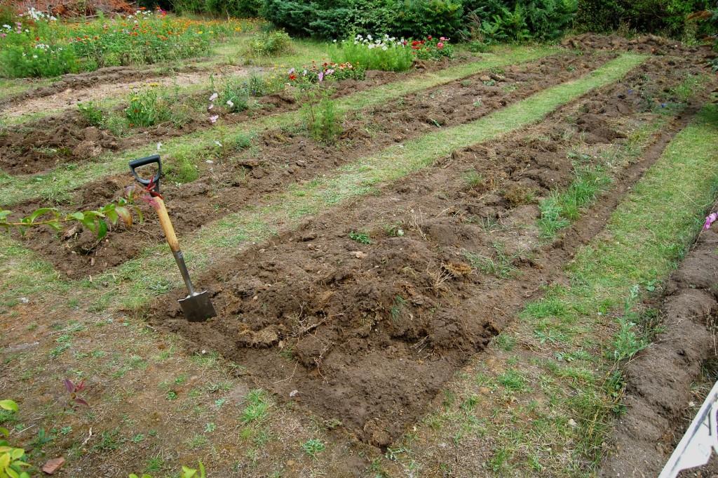 Higgledy garden uber beds