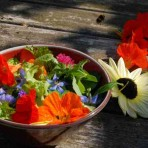 Edible Flower Collection.