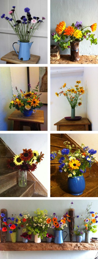 Cut flower montage