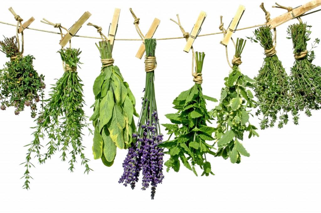 higgledy herbs