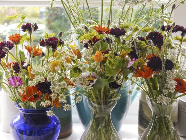 Lovely photo from Kathy (X)...Black Ball cornflowers looking amazing amongst the rest of the fab flowers.