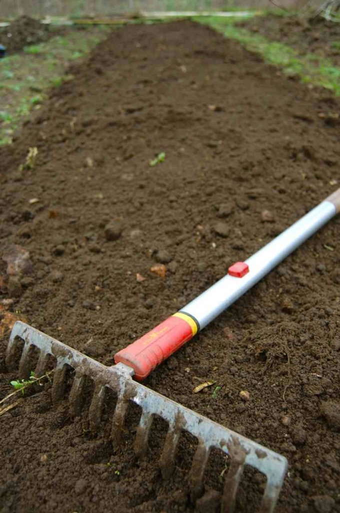 A heavy rake will help you bring your soil to order.