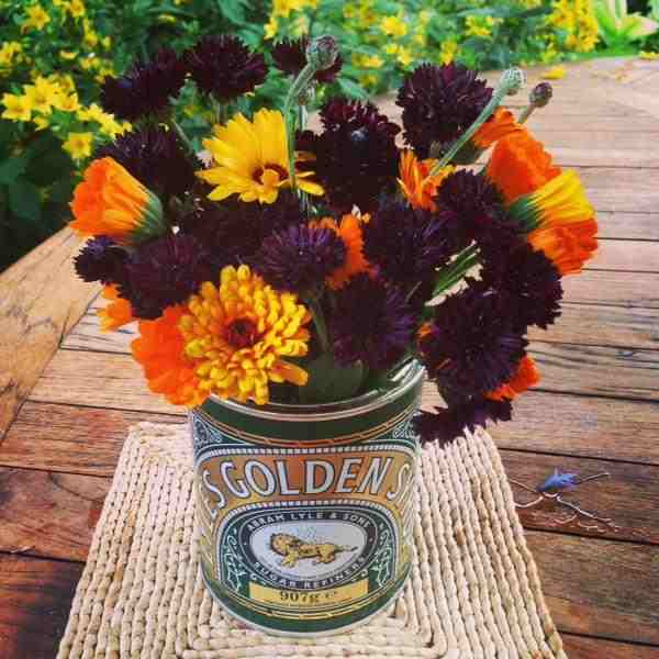 Calendula with Cornflowers 'Black Ball'...thx to Karina for sending this one.