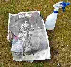 Cover the tray with a single sheet of newspaper...preferably one with the graven image of a lost rock star.