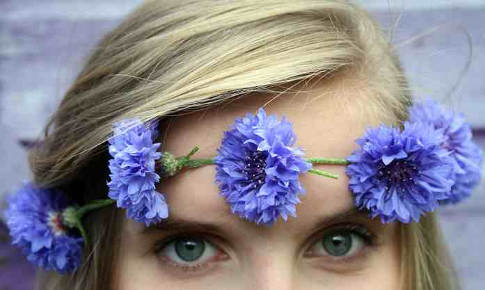 cornflowers-blue-eyes
