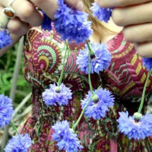 cornflower-blue-ball
