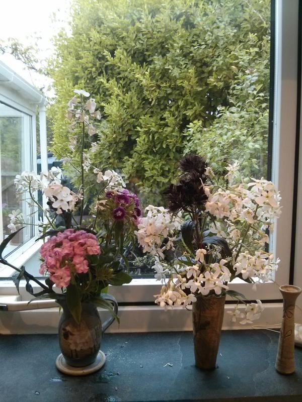 Here's some more Hesperis (and Sweet William) from Nick Hearl (Twitter)...and don't they look jolly...432 points plus 37 bonus points for using old school happy hippy vases...