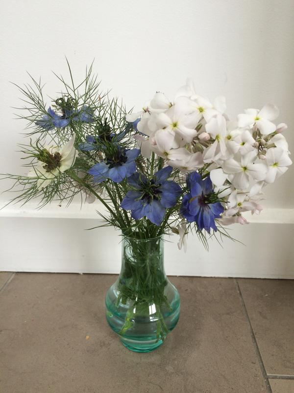 Lovely and simple little combo from @bessybrad (Twitter). Nigella and Hesperis.