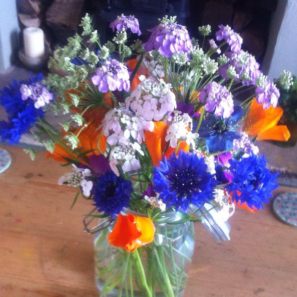 Early Summer action...from @Naturalflavours (Twitter)...the lilac coloured flower is Candytuft 'Crown'.