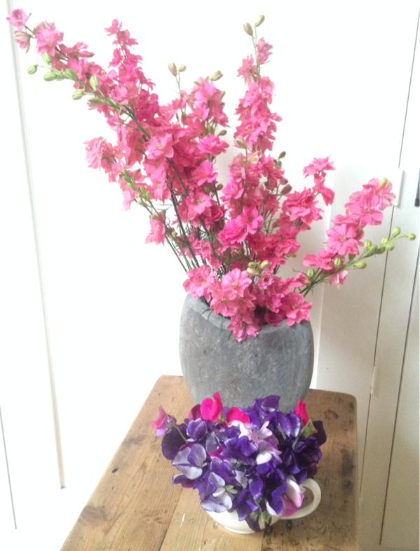 Larkspur looking spanking gorgeous...from the lovely @theremaybebugs