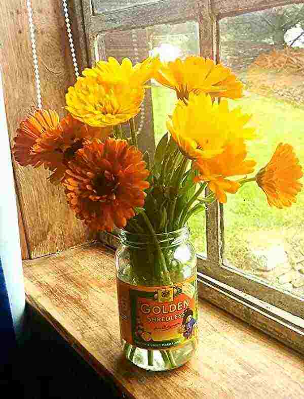calendula-flowers1 (1)