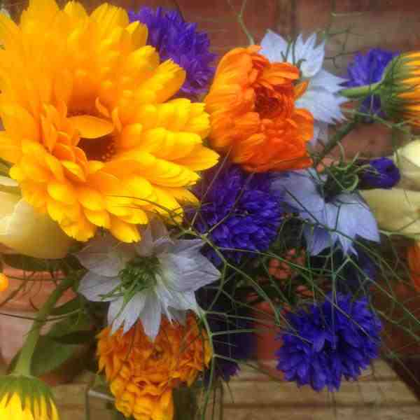 These beauties were grown by Lisa P...my fav combo...the Nigella and Cornflowers look delicious...and...as it happens...all edible.