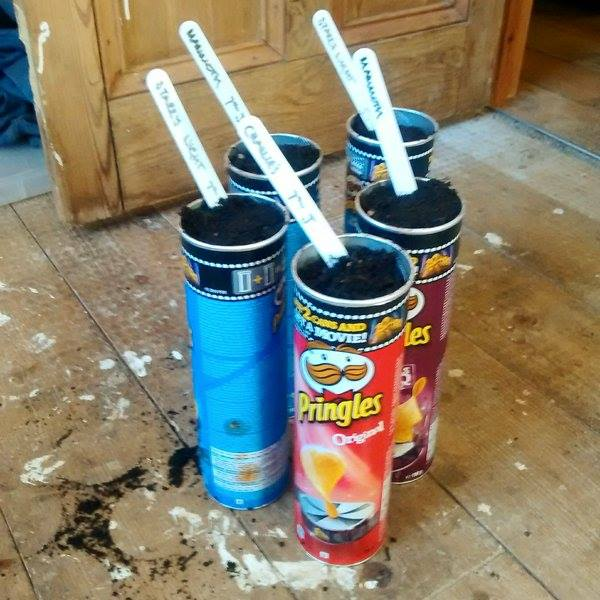 Sowing into Pringles tubes makes you look young and funky and like someone who could tell you what is number one in the hit parade.