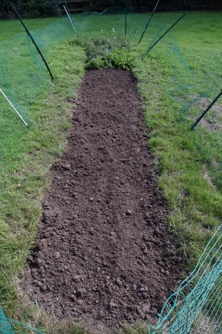 Well weeded bed with Stirling bunny fencing.